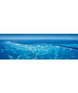 John Xiong, Great Barrier Reef III