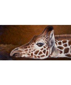 Jutta Plath, Giraffe