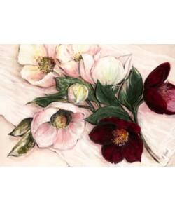 Elisabeth Krobs, Elegant Anemones