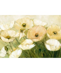 Elisabeth Krobs, Tender Poppies