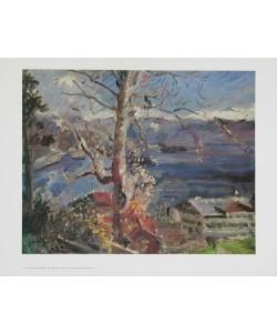 Lovis Corinth, Baum am Walchensee