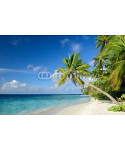 M.Rosenwirth, Strand mit Palmen