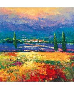 Madjid, Provence II