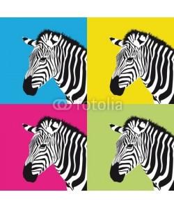 maconga, pop art zebra