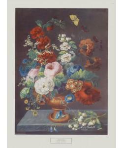 Martin Fromhold, Sommerblumen