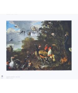 Melchior Hondecoeter, Das Vogelkonzert