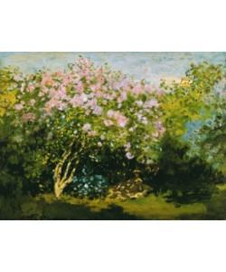 Claude Monet, Blühender Flieder in der Sonne
