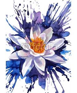 okalinichenko, lily flower
