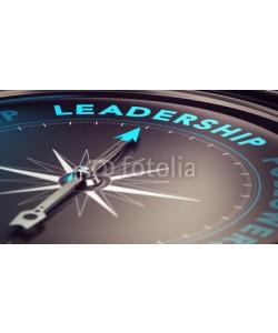 Olivier Le Moal, Leadership