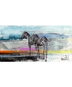 Patrick Cornée, Zebra