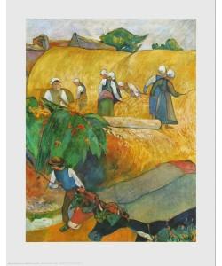 Paul Gauguin, Bei der Ernte