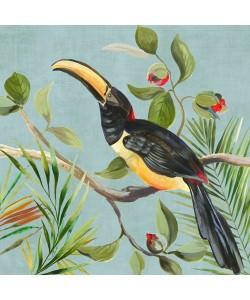 Aimee Wilson, Paradise Toucan II