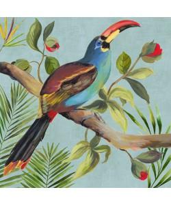Aimee Wilson, Paradise Toucan I