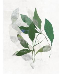 PI Studio, Emerald Botanics II