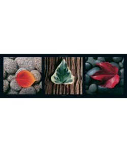 Laurent Pinsard, Leaves