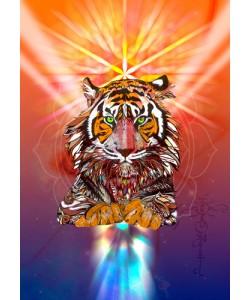 Karin Roberts, Cosmic Tiger