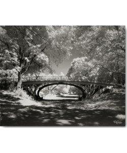 Ralf Uicker, Central Park Bridge