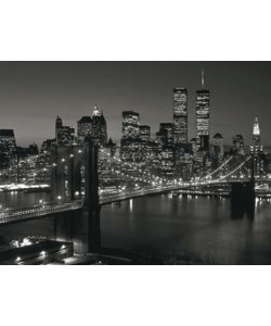 Richard Berenholtz, Manhatten Skyline at Night