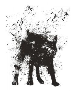 Balazs Solti, Wet Dog