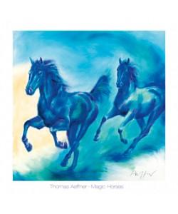 Thomas Aeffner, Magic Horses