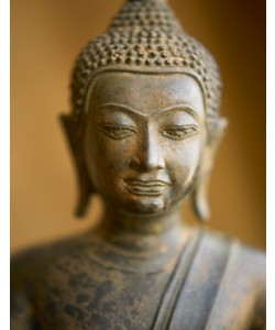 Tom Weber, Buddha 1