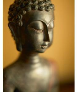 Tom Weber, Buddha 2