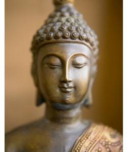 Tom Weber, Buddha 4