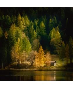 Uwe Steger, Nature Art Color I