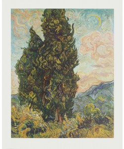 Vincent van Gogh, Zypressenlandschaft (Kupfertiefdruck)