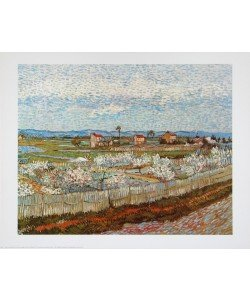 Vincent van Gogh, Der Obstgarten, 1889 Landschaft bei Arles