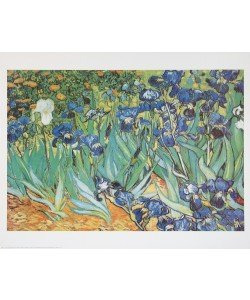 Vincent van Gogh, Schwertlilien - Iris Garden