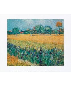 Vincent van Gogh, Vista di Arles con irises