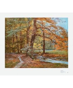 Walter Kopp, Herbstwald