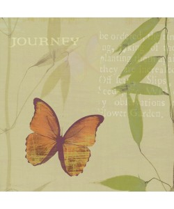 Wild Apple Portfolio, Journey