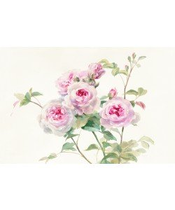 Danhui Nai, Sweet Roses on White Green