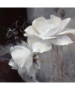 Willem Haenraets, Wealth of Flowers II