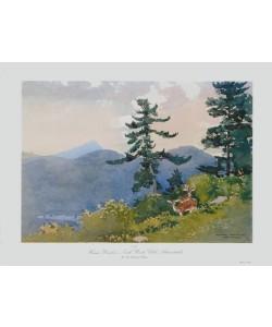 Winslow Homer, North Woods Club