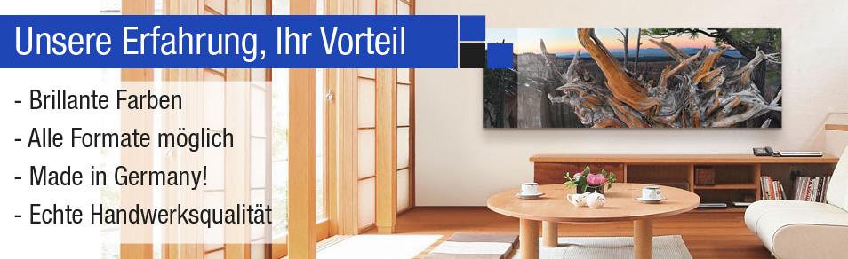 alu dibond bilder g nstig kaufen bei art galerie. Black Bedroom Furniture Sets. Home Design Ideas